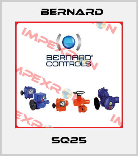 Bernard-SQ25 price